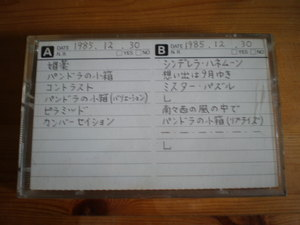 P1010061_02.JPG